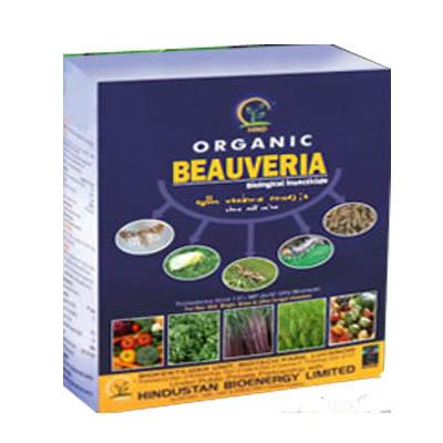 Hind Organic Beauveria