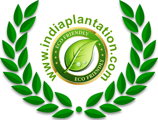 india plantation new logo