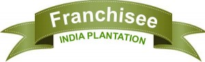 india plantation franchisee